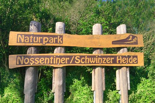 naturpark-nossentin-schwinzer-heide